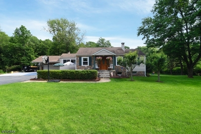 Roxbury Twp. Single Family Home For Sale: 260 Eyland Ave