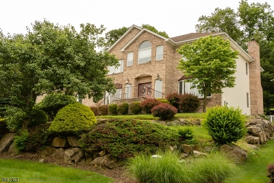 Parsippany-Troy Hills Twp. Single Family Home For Sale: 9 Battleridge Rd