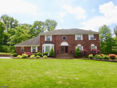 Randolph Twp. Single Family Home For Sale: 4 Viking Ct