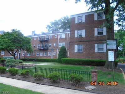 Newark City Condo/Townhouse For Sale: 63 Forest Hill Pky #1H