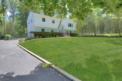 Montville Twp. Single Family Home For Sale: 22 Pine Brook Rd