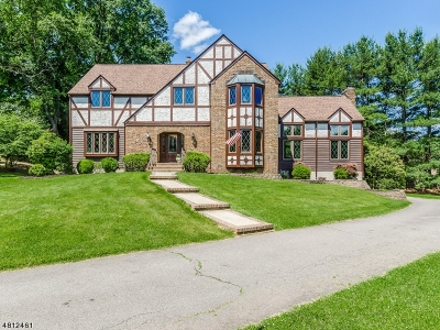Clinton Twp. Single Family Home For Sale: 5 High Point Ct