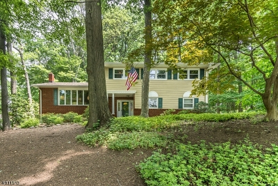 Denville Twp. Single Family Home For Sale: 41 Old Mill Dr