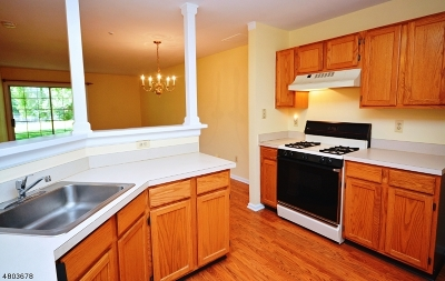 Bernards Twp. Condo/Townhouse For Sale: 56 Potomac Dr