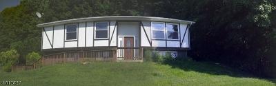 Single Family Home For Sale: 131 Munsonhurst Rd