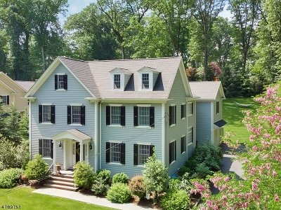 Morris Twp. Single Family Home For Sale: 10 Armstrong Rd