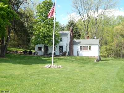 Alexandria Twp., Frenchtown Boro Single Family Home For Sale: 133 Woolf Rd