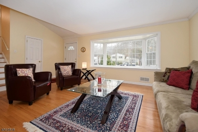 New Providence Single Family Home For Sale: 292 Charnwood Rd