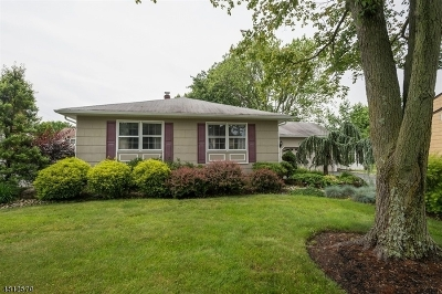 Edison Twp. Single Family Home For Sale: 12 Whittier St