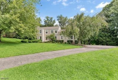 Clinton Town, Clinton Twp. Single Family Home For Sale: 7 Grace Dr