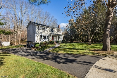 Mendham Boro, Mendham Twp. Single Family Home For Sale: 7 Mansfield Ct