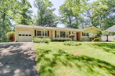 Parsippany Single Family Home For Sale: 38 Maplewood Dr