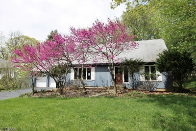 Mount Olive Twp. Single Family Home For Sale: 24 Carson Rd