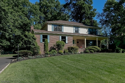 Westfield Town NJ Single Family Home For Sale: $779,000