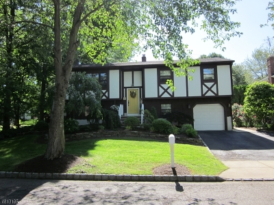 Parsippany Single Family Home For Sale: 8 Walnut St