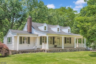 Summit Single Family Home For Sale: 14 Mount Vernon Avenue