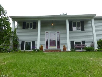 Randolph Twp. Single Family Home For Sale: 170 Morris Tpke
