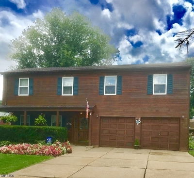 Mount Olive Twp. Single Family Home For Sale: 26 Renault Dr
