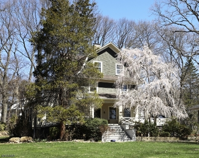 Single Family Home For Sale: 209 Morris Ave