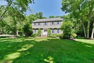 Bridgewater Twp. Single Family Home For Sale: 939 Sunset Rdg