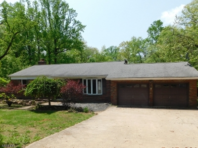 Alexandria Twp., Frenchtown Boro Single Family Home For Sale: 359 Mechlin Corner Rd