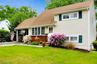 Somerville Boro Single Family Home For Sale: 23 Mastogen Dr