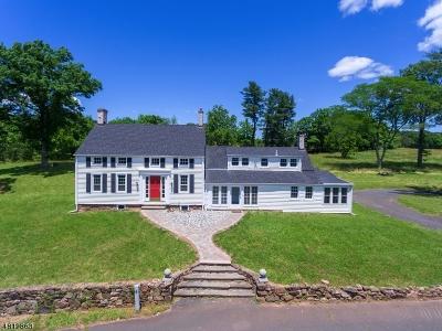 Branchburg Twp. Single Family Home For Sale: 74 Lamington Road