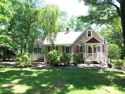 Bridgewater Twp. Single Family Home For Sale: 1535 Mountain Top Rd