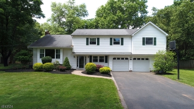 Hillsborough Twp. Single Family Home For Sale: 451 S Woods Rd