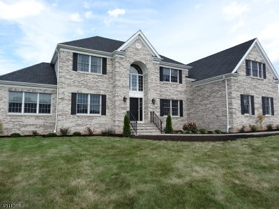 Hillsborough Twp. Single Family Home For Sale: 8 Whetherell Rd