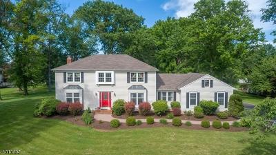 Hillsborough Twp. Single Family Home For Sale: 3 Apple Hill Rd