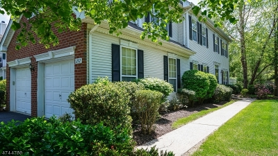 Readington Twp. Condo/Townhouse For Sale: 1202 S Branch Dr