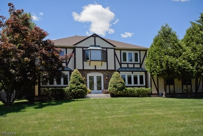 Parsippany-Troy Hills Twp. Single Family Home For Sale: 3 Ledgerock Ct