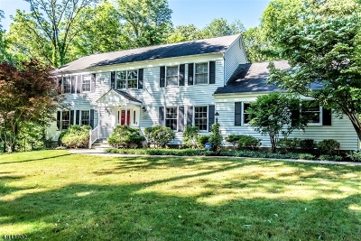 Randolph Twp. Single Family Home For Sale: 42 Longview Ave