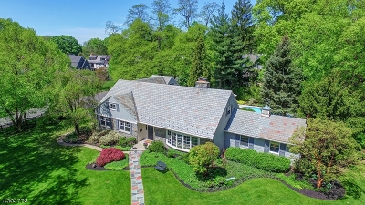 Westfield Town NJ Single Family Home For Sale: $1,249,000