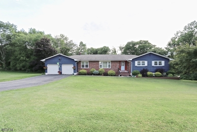 Denville Twp. Single Family Home For Sale: 26 Nicole Dr