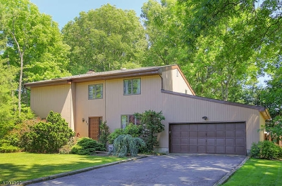Scotch Plains Twp. Single Family Home For Sale: 11 Peach Ct