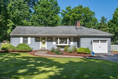 Bernards Twp. Single Family Home For Sale: 92 N Maple Ave