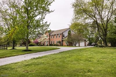 Hillsborough Twp. Single Family Home For Sale: 58 Milburn Drive