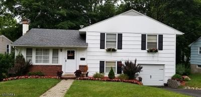 Oakland Boro Single Family Home For Sale: 13 Huron Ave