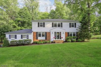 Bernards Twp. Single Family Home For Sale: 85 Penwood Road
