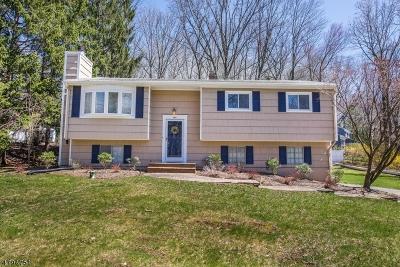 Randolph Twp. Single Family Home For Sale: 1 Pamela Dr