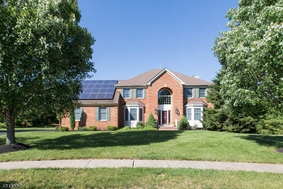 Montgomery Twp. Single Family Home For Sale: 17 Regents Ct