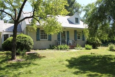 Readington Twp. Single Family Home For Sale: 125 Stanton Rd