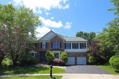 Bedminster Twp. Single Family Home For Sale: 36 Revere Dr