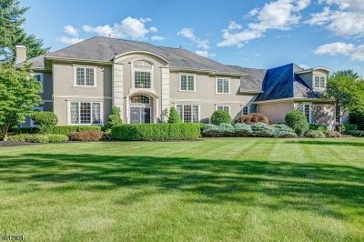 Bernards Twp. Single Family Home For Sale: 16 Chelsea Ct
