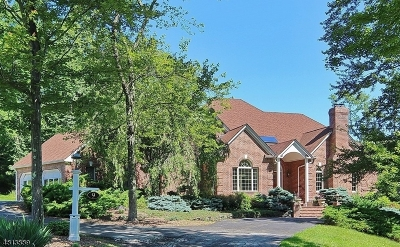 Harding Twp. Single Family Home For Sale: 9 Spring House Ln