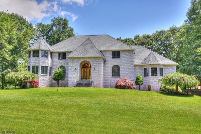 Sparta Twp. Single Family Home For Sale: 449 W Mountain Rd
