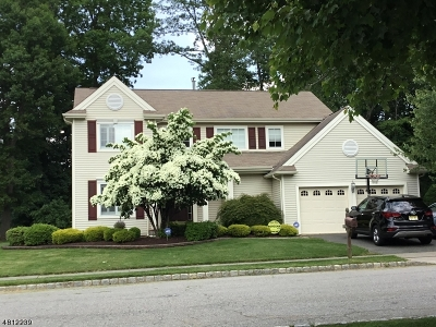 Mount Olive Twp. Single Family Home For Sale: 120 Connelly Ave