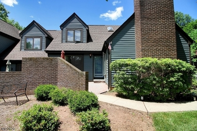 Bernards Twp. Single Family Home For Sale: 3 Valley View Dr